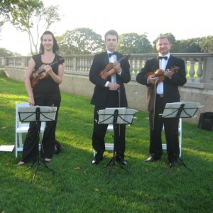 Harmonia Strings - Classical Ensemble / Violinist in Manhattan, New York