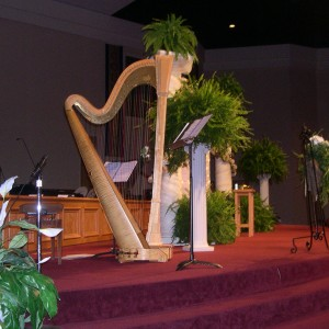 Harp and flute - Wedding Band in Canfield, Ohio