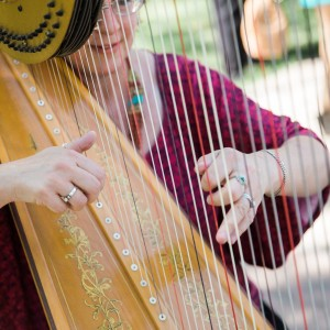 Harpist-Miriam Shilling - Harpist / Celtic Music in Abiquiu, New Mexico