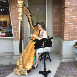 Harpist - Molly Jones - Harpist / Celtic Music in Carmel, Indiana