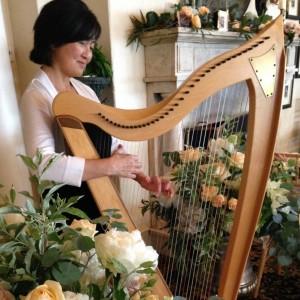 Harpist Judy Saiki - Harpist / Wedding Musicians in Parsonsfield, Maine