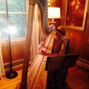 Harpist - Molly Fitzpatrick - Harpist / Celtic Music in Pitman, New Jersey