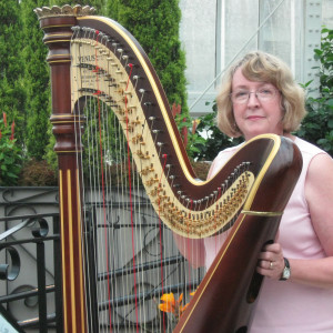 Harpist Serena O'Meara - Harpist / Holiday Entertainment in Eau Claire, Wisconsin