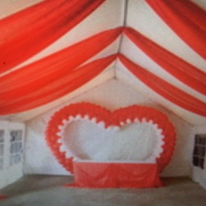 Harris county party rentals - Party Rentals in Houston, Texas