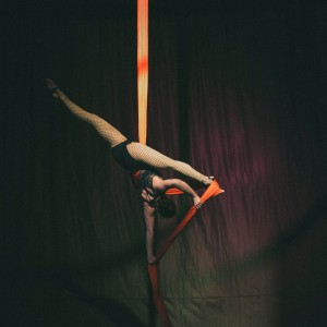 Hayley Larson Aerialist - Aerialist in Chicago, Illinois