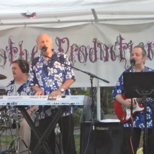 Heat Wave - Oldies Music / Cover Band in Chestnut Ridge, New York