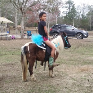 Heavenly Grace Farm - Pony Party / Children's Party Entertainment in Kiln, Mississippi