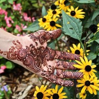 Henna by Senya - Henna Tattoo Artist in New York City, New York