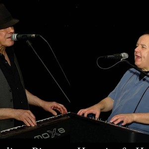 Hermie and Harry's Dueling Pianos - Dueling Pianos / Pianist in Pittsburgh, Pennsylvania