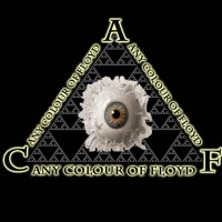 Any Colour of Floyd - Pink Floyd Tribute Band / Tribute Artist in Buffalo, New York
