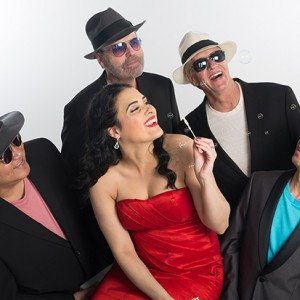 High Brow and the Shades - Cover Band / 1960s Era Entertainment in Minneapolis, Minnesota