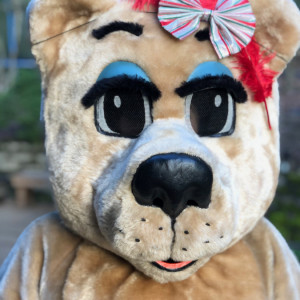 Honey Bear - Costumed Character in Portland, Oregon