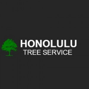 Honolulu Tree Service - Venue in Honolulu, Hawaii