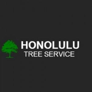 Honolulu Tree Service - Venue in Honolulu, Hawaii