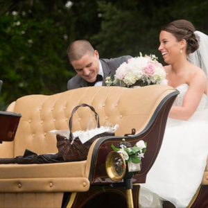 Friesian Horse Drawn Carriage - Horse Drawn Carriage / Wedding Services in Medina, Ohio