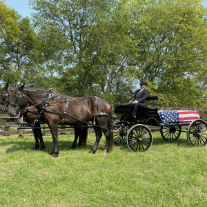Prestige Carriage and Funeral Service - Horse Drawn Carriage / Wedding Services in Hendersonville, Tennessee