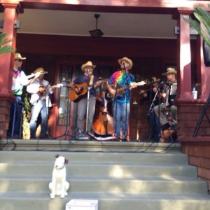 Howell Mountain Boys - Bluegrass Band in Napa, California