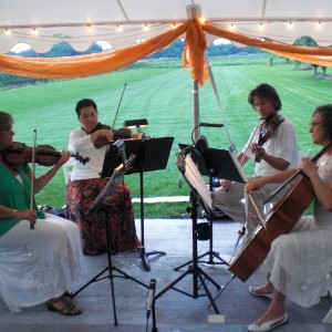 Hudson Valley Strings - String Quartet / String Trio in Warwick, New York