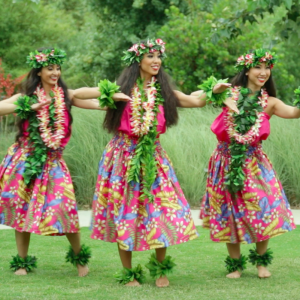 Hula and Tahitian Luau Entertainment - Dance Troupe / Hawaiian Entertainment in Los Angeles, California