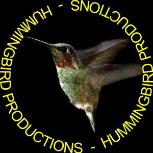 Hummingbird Productions - Videographer / Video Services in Ojai, California