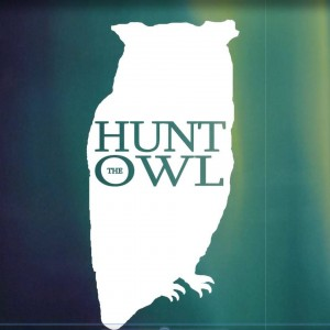 Hunt The Owl