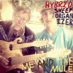 Hybrid Sheep Organizer - Folk Band in Boise, Idaho