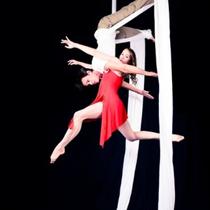 Iluminar Aerial Ltd. - Aerialist / Dance Instructor in Denver, Colorado