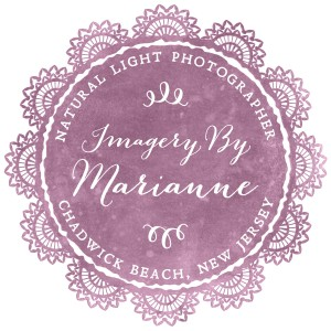 Imagery By Marianne - Photographer in Lavallette, New Jersey