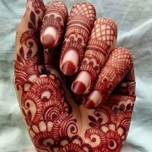 Indian & Arabic Henna/Mahendi - Body Painter / Halloween Party Entertainment in Milwaukee, Wisconsin