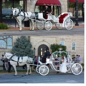 Indiana Carriage - Horse Drawn Carriage / Holiday Party Entertainment in Indianapolis, Indiana