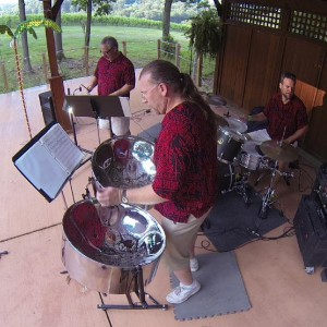 Island Music Trio - Steel Drum Band in Roanoke, Virginia