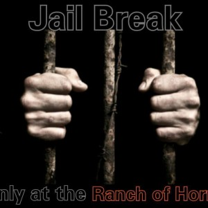 Jail Break Escape Room and more