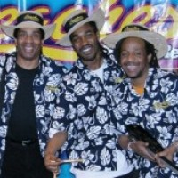 JamxBand - Steel Drum Band / Caribbean/Island Music in Indianapolis, Indiana