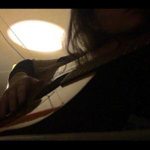 Janet Svetik - Guitarist / Wedding Entertainment in Bloomfield, New Jersey