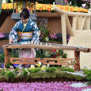 Saeko Kujiraoka -Japanese Koto Music - Asian Entertainment in Los Angeles, California