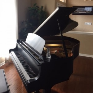 Jazz Lite - Keyboard Player / Pianist in Beverly Hills, Florida