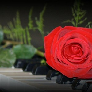 Jessica Lyn Music - Pianist / Wedding Entertainment in Sussex, Wisconsin