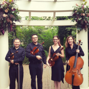 Jill Crist, cellist - String Quartet in Columbus, Ohio