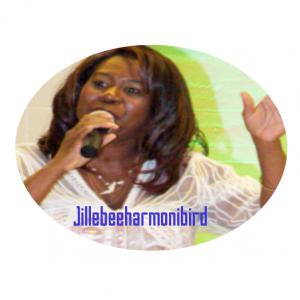 Jillebeeharmonibird - Wedding Singer / Wedding Entertainment in Montreal, Quebec