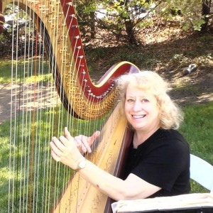 Joan Steinberg Harpist - Harpist / Wedding Musicians in Philadelphia, Pennsylvania