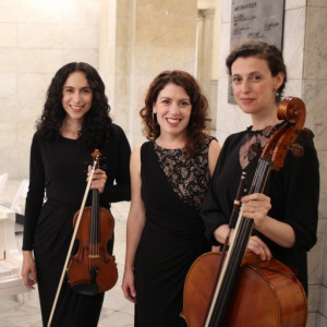 Gold Standard Musicians - Classical Ensemble / String Trio in St Louis, Missouri