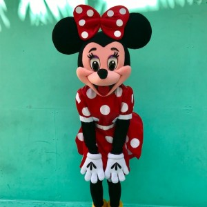 Brittney's Party Characters - Costumed Character / Costume Rentals in Houston, Texas