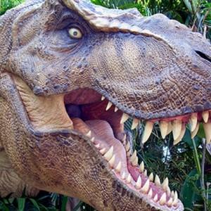 Jurassic Reptile Adventures