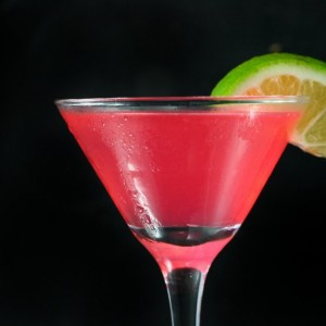 """Just Delicious Libations"" (JDL) Bartending - Bartender in Virginia Beach, Virginia"