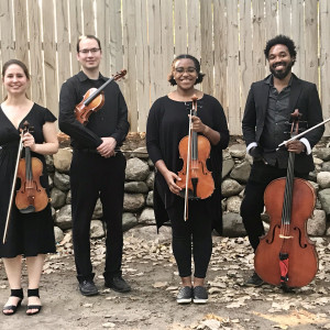 KalHaven Strings - String Quartet / Violinist in Kalamazoo, Michigan