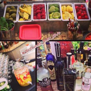 Karoline's Bartending Services - Bartender / Waitstaff in San Jose, California