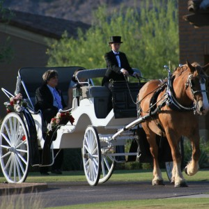 KC's Classic Carriage Company - Horse Drawn Carriage in San Tan Valley, Arizona