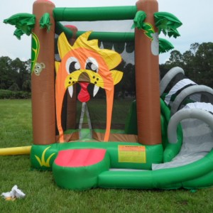 Kids Parties Your Way - Children's Party Entertainment / Pony Party in Orlando, Florida