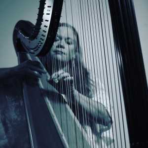 Kim Meyer - Harpist - Harpist / Celtic Music in Omaha, Nebraska