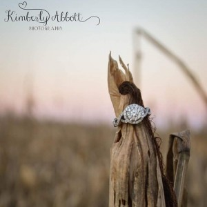 Kimberly Abbott Photography - Photographer / Portrait Photographer in Good Hope, Georgia